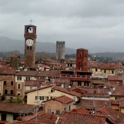 The medieval tower-houses, Lucca