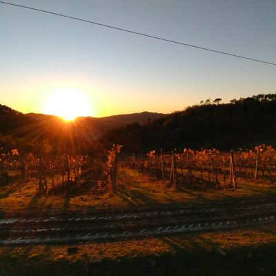 Sunset in Chianti