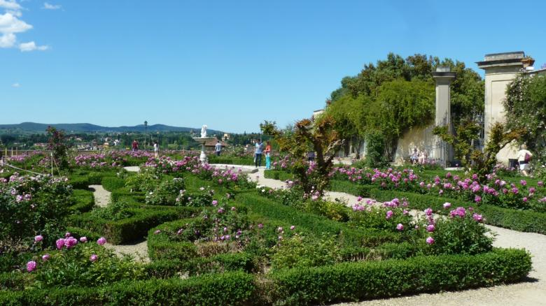 Boboli in bloom