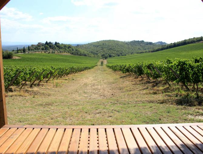 A perfect place for a picnic among Chianti Classico vineyards