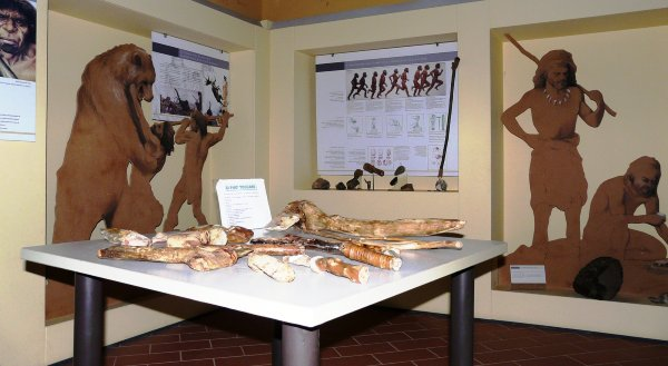 The Archeological Documentation Centre - Sant'Agata, Scarperia