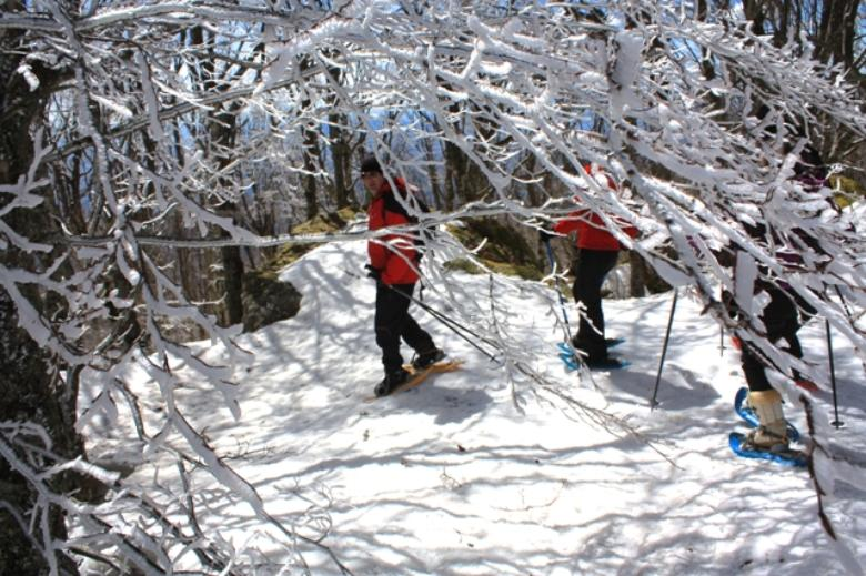Snowshoeing on Monte Amiata