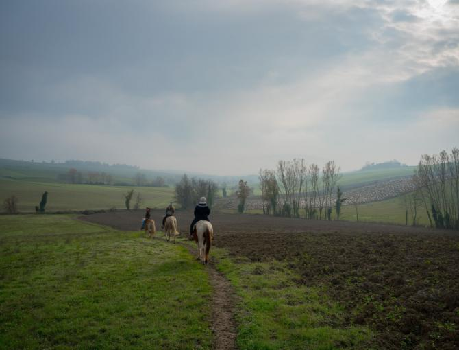The Mugello is a great destination for all horse lovers