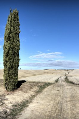 Val d'Orcia along the Via Francigena